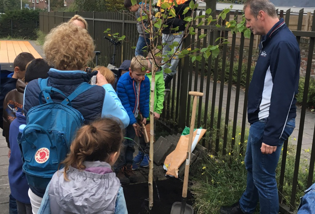 Steenbreek tuin vol... boomje planten Boekanier 2