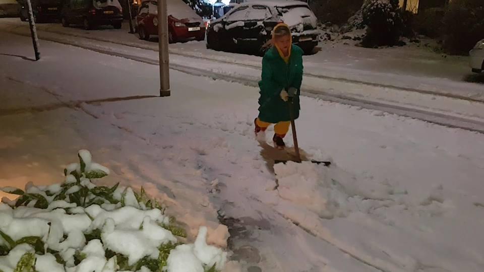 Sneeuw Gin de Vries