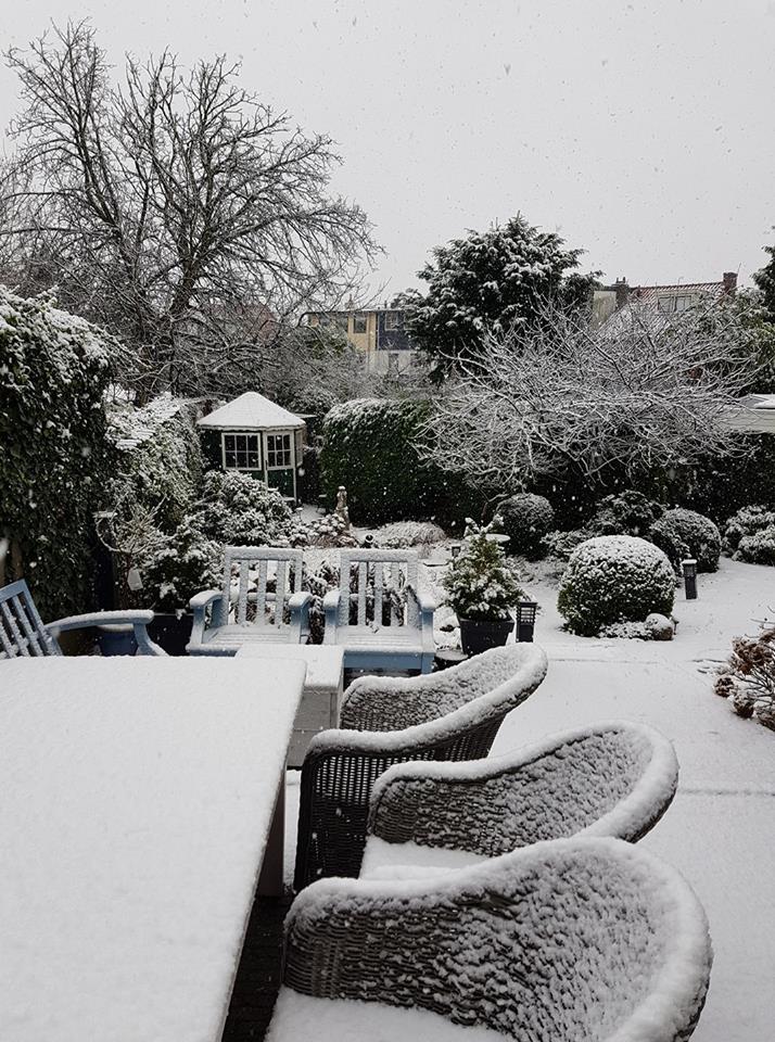 Sneeuw Pauline Sparrius