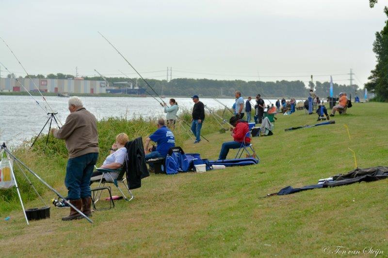 viswedstrijd NZK 2018 (3)