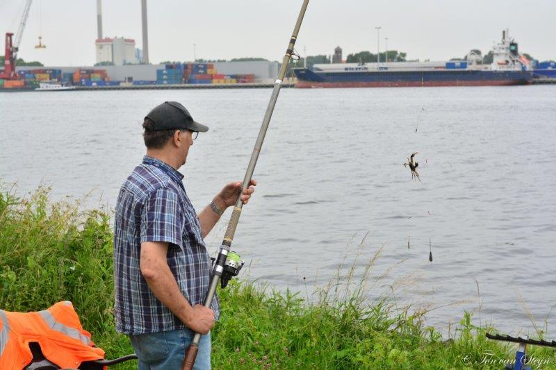 viswedstrijd NZK 2018 (9)