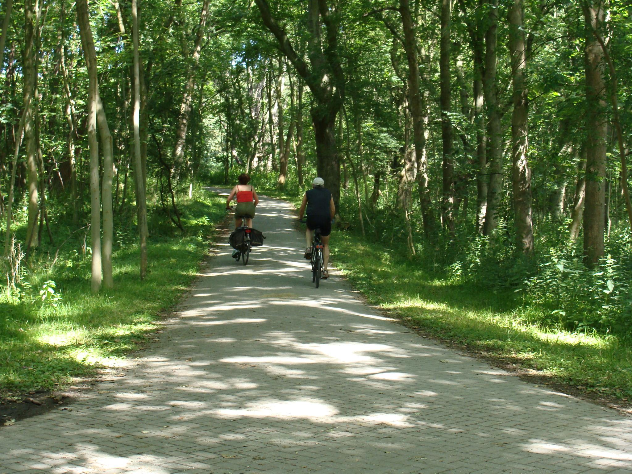 Nieuw wegdek fietspad Duin en Kruidberg