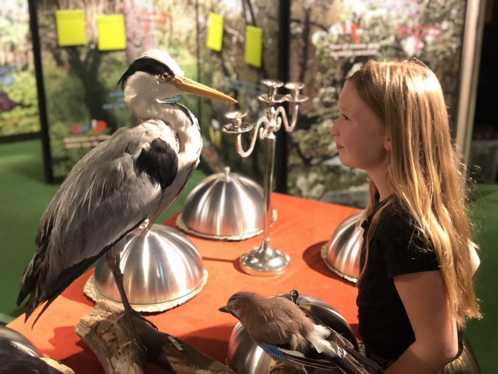 Pieter Vermeulen Museum open in de vakantie