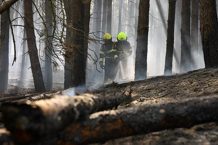 Verhoogd risico op natuurbrand in bos- en duingebieden