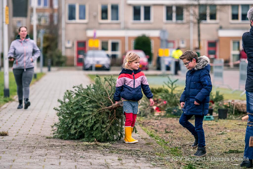 Kinderen zamelen massaal kerstbomen in
