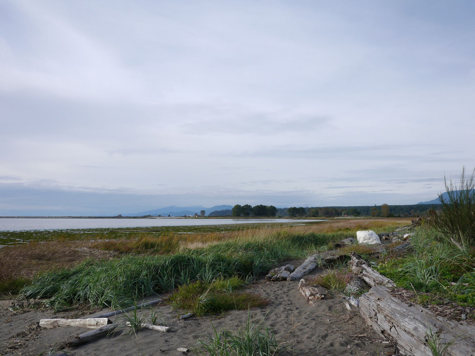 Iona Beach in Richmond BC | www.rtwgirl.com