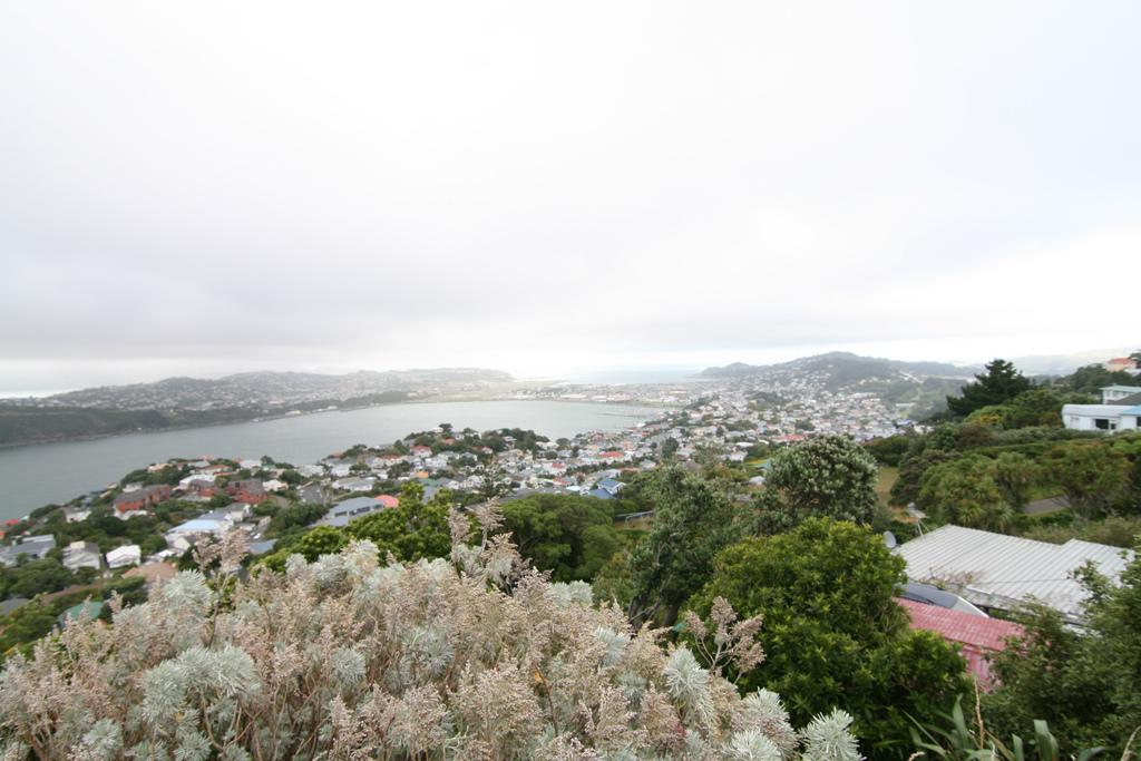 Mount Victoria in Wellington