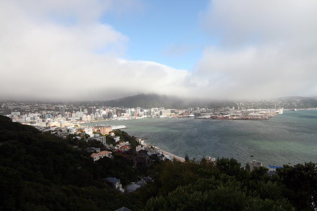 Wellington New Zealand | www.rtwgirl.com
