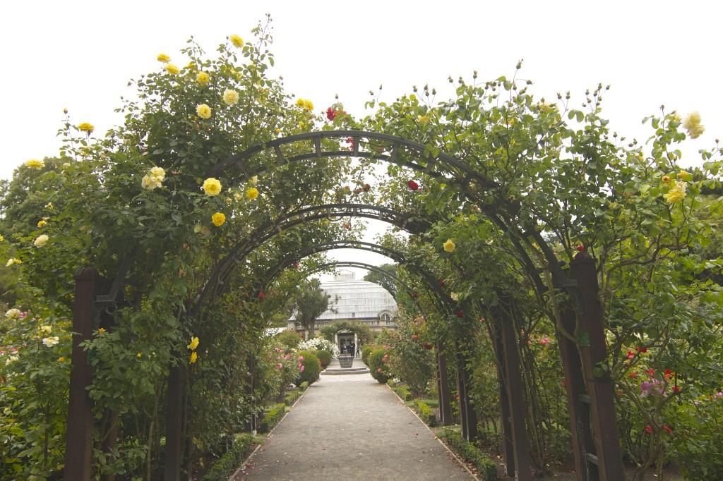 Christchurch botanical