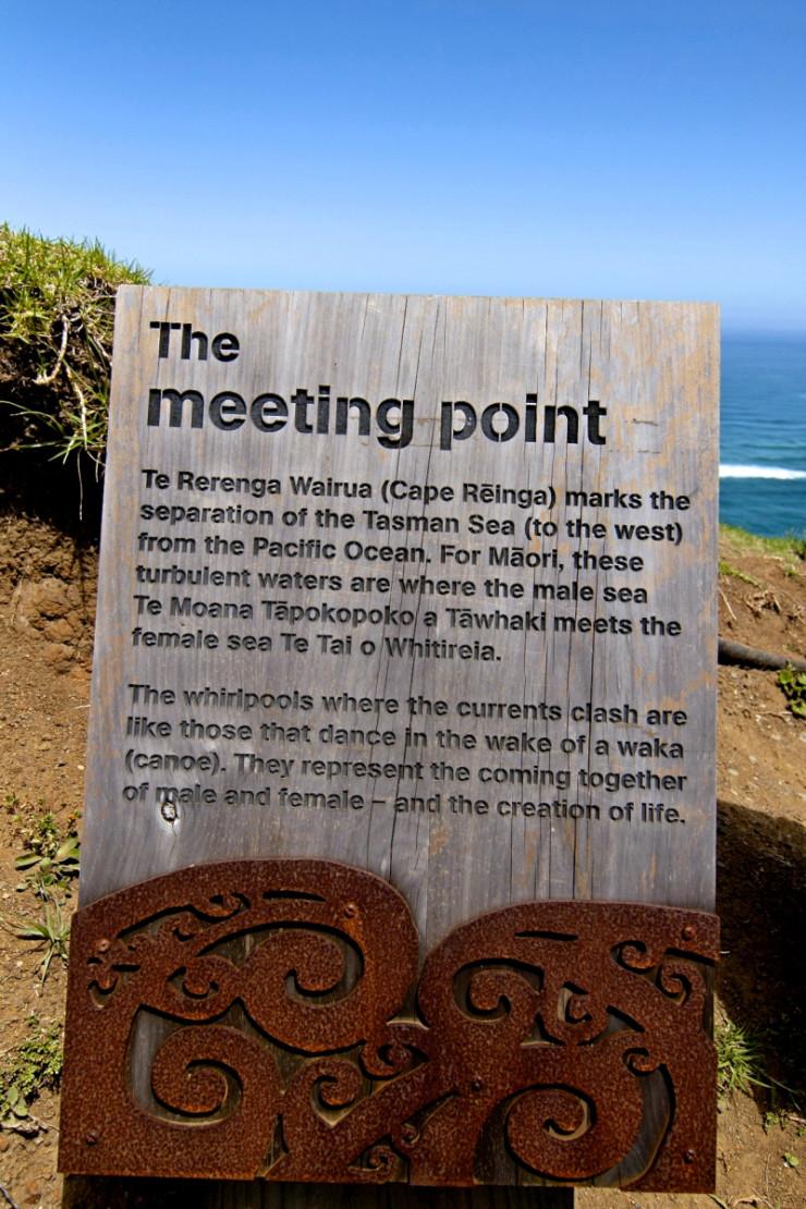 Cape Reinga + 90 Mile Beach: Dune Rider Tour | www.rtwgirl.com