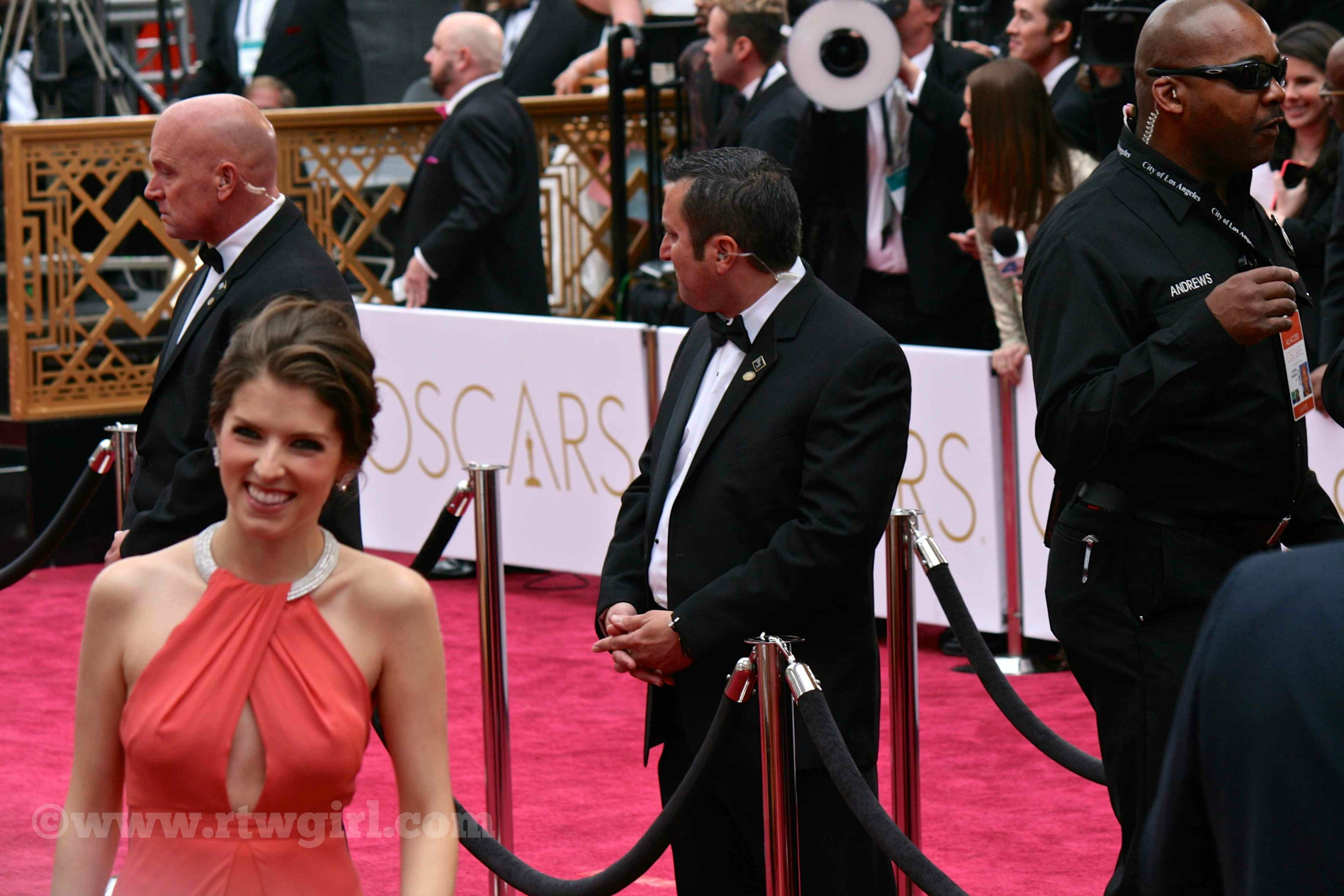 Anna Kendrick Red Carpet 2015