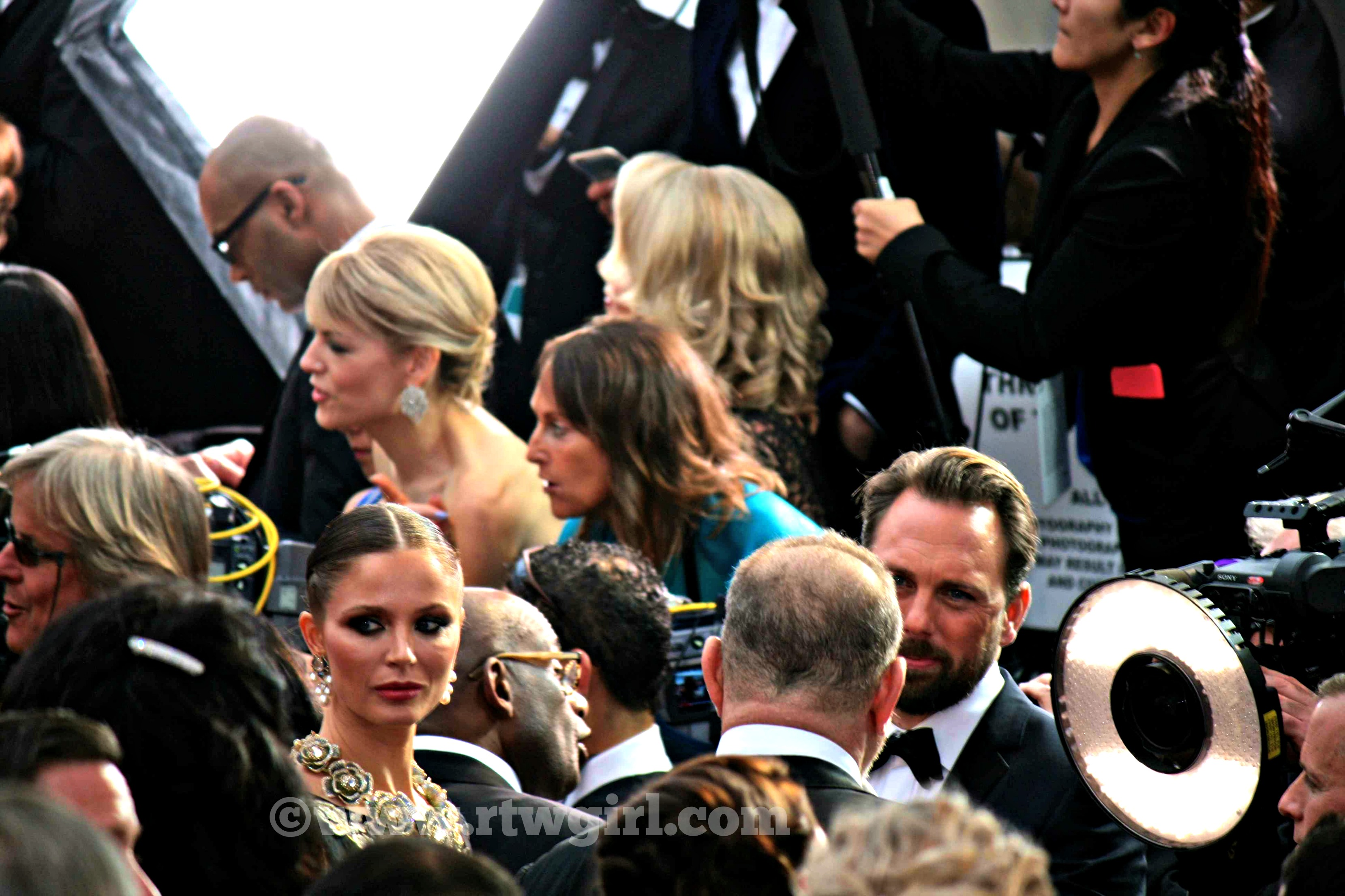 Georgina Chapman Oscar Red Carpet 2015
