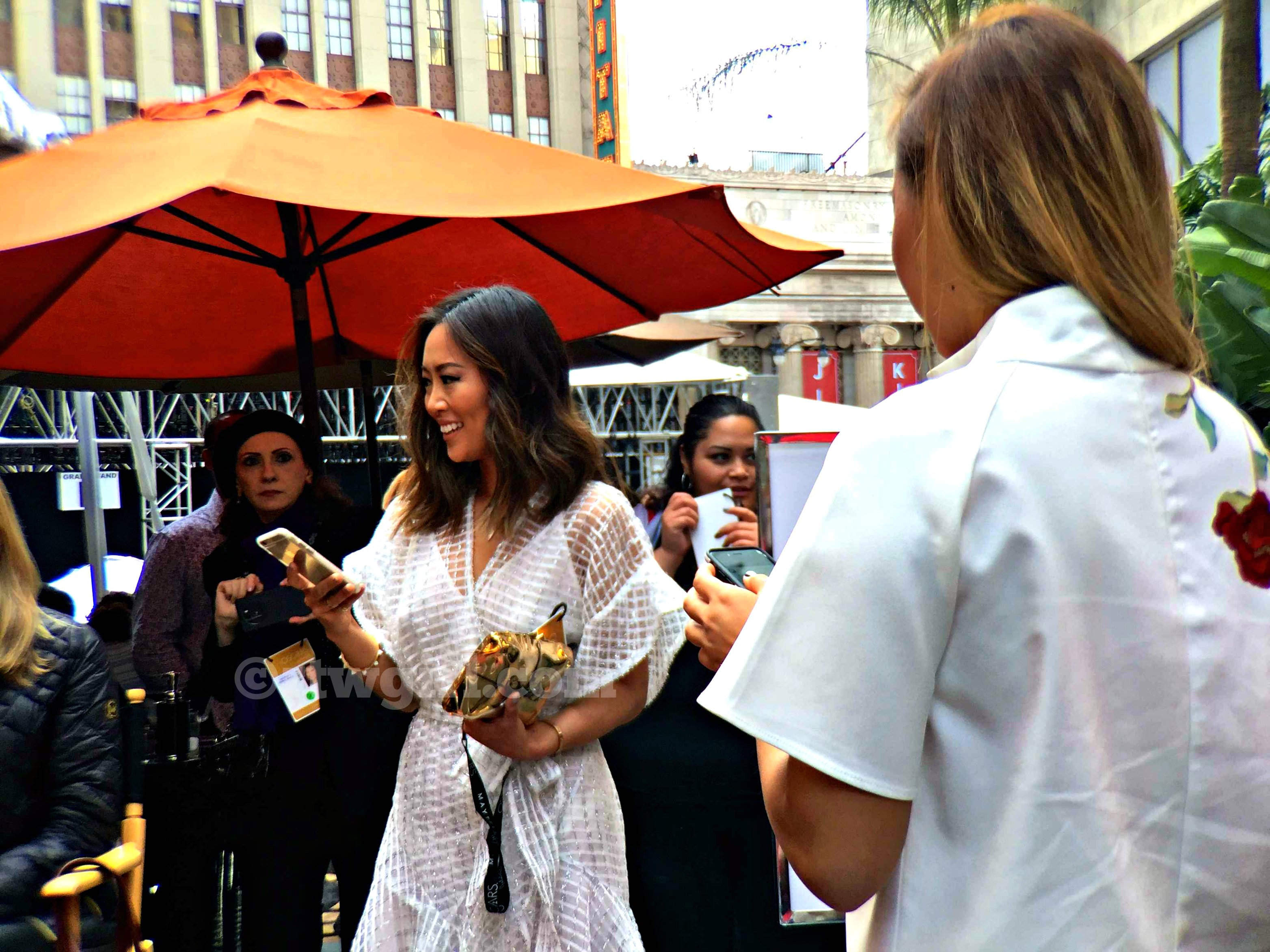 Song of Style Aimee Red Carpet 2015