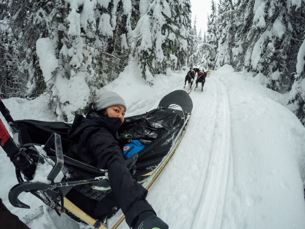 Mountain Man Adventures Dog sledding | www.rtwgirl.com