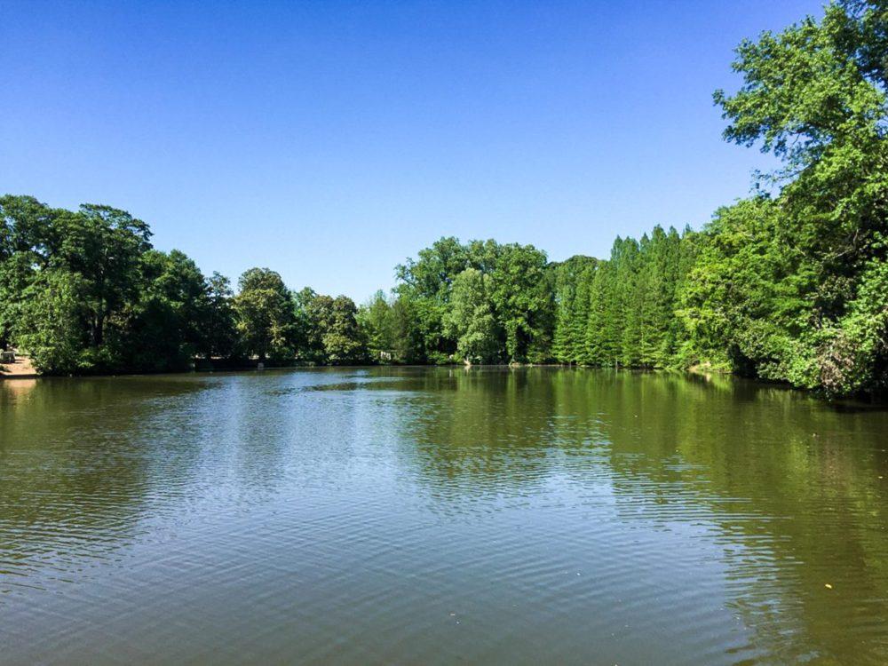 Piedmont Park Atlanta | rtwgirl