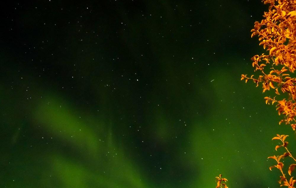 Northern Lights Dawson City Yukon | www.rtwgirl.comv