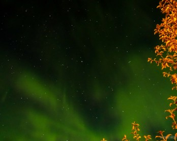 Northern Lights Dawson City Yukon | www.rtwgirl.comv