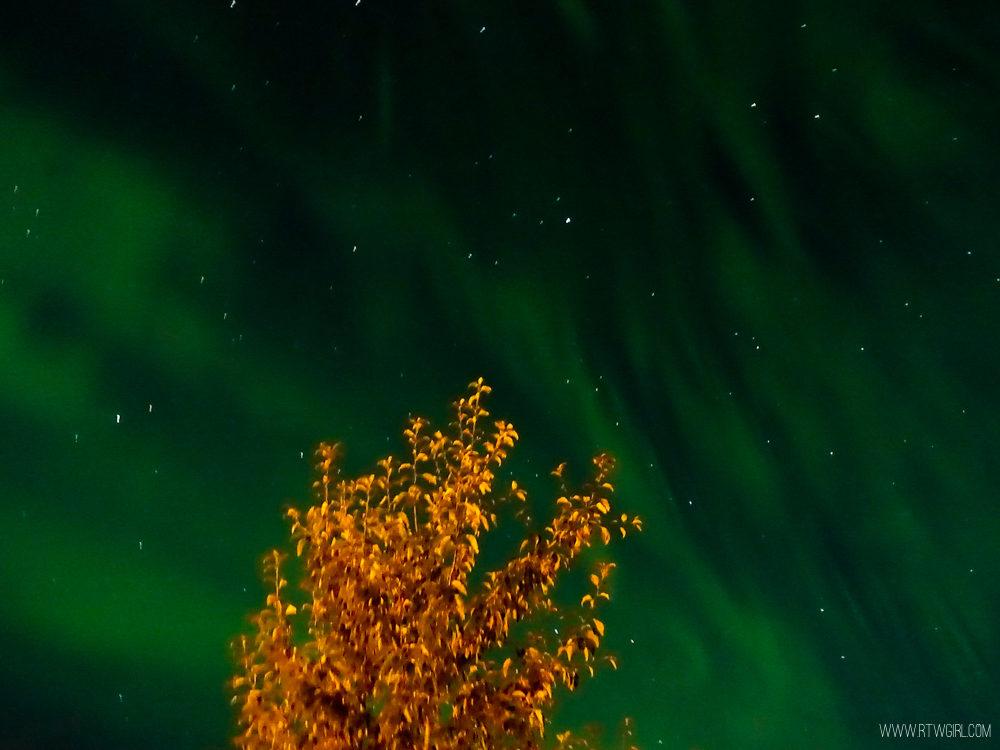 Aurora Borealis Yukon | www.rtwgirl.com