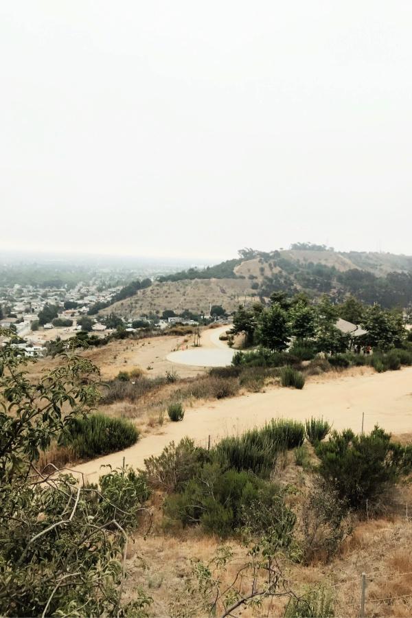 Baldwin Hills Overlook | rtwgirl