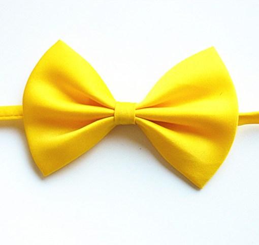 Бабочка желтый цвет