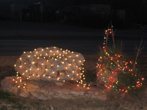 Lights on rock and cactus.