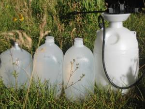 This photo shows my jugs of water sitting in the meadow, warming in the sun.