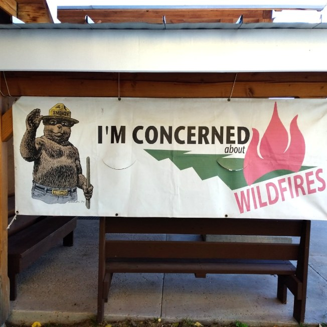 "A banner shows Smokey Bear waving. Text reads ""I'm concerned about Wildfires"" with an image of a fire and a tree."