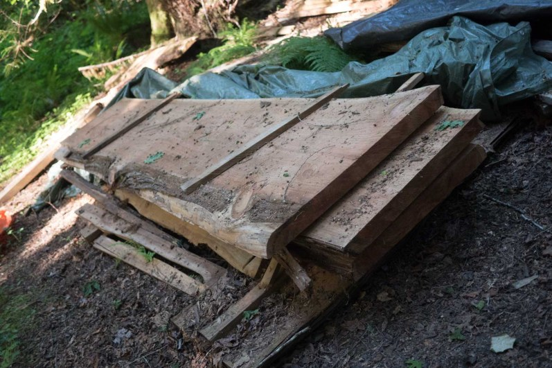 Looing for slabs of cedar or Maple?