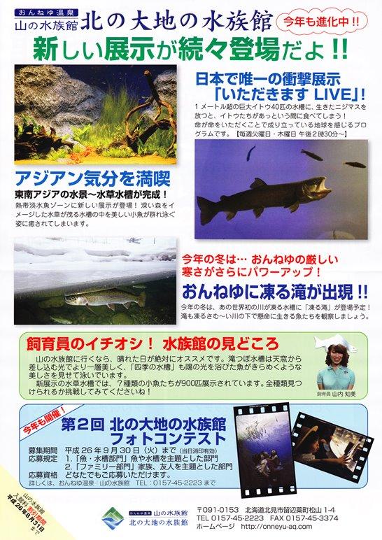 北の大地の水族館 新しい展示が次々登場!
