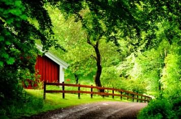 Country road-Gränna-Sweden