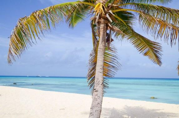 Aruba oh la la