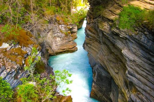 Athabasca falls ravin