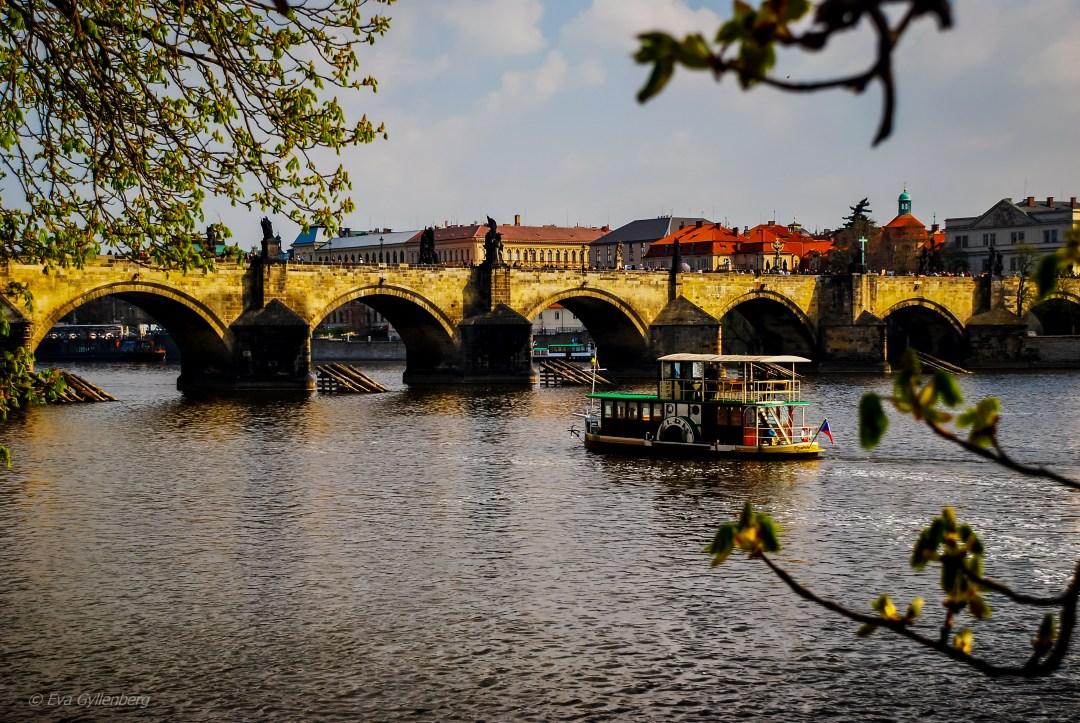 Karlsbron - Prag - Tjeckien