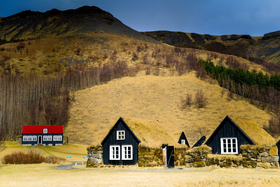 Island- Skogar museum - Dagsutflykt från Reykjavik till Vik
