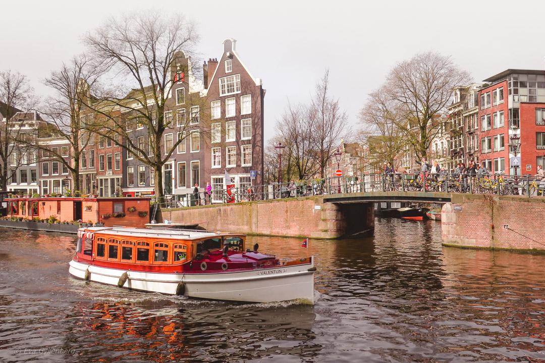 Amsterdam-Nederlanderna
