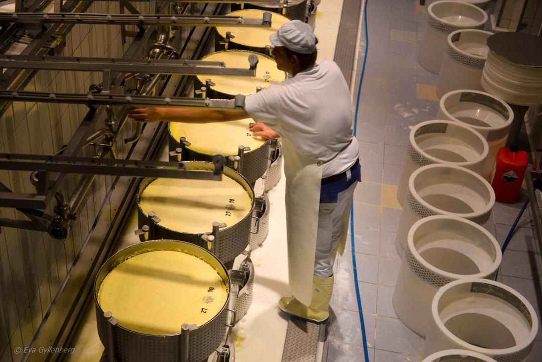 Schweiz - Gruyere ost