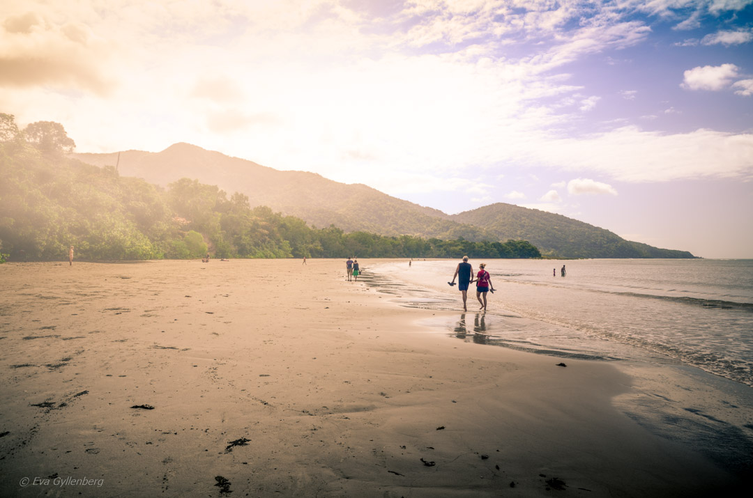 Cape Tribulation - Daintree-Queensland-Australien
