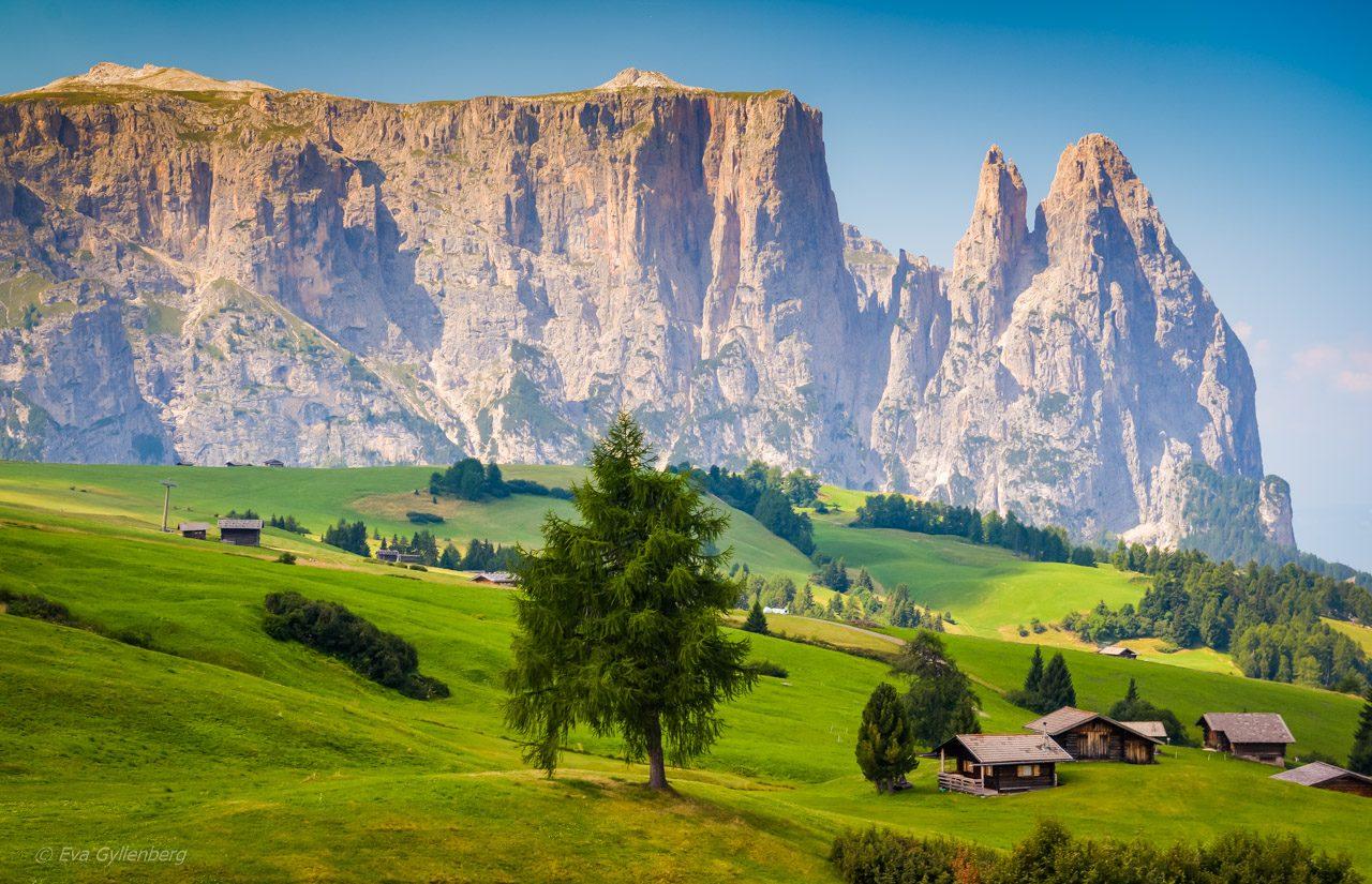 Seiser Alm - Dolomiterna - Italien