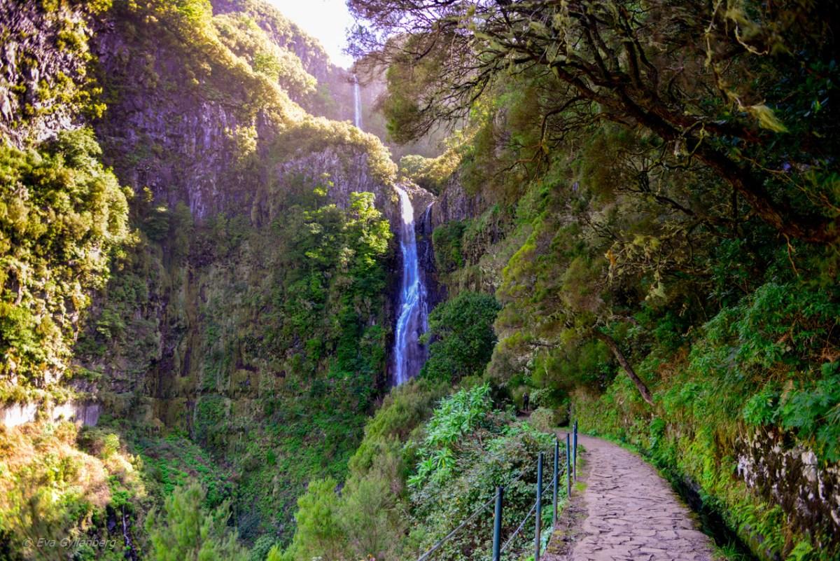 Vandra på Madeira - Levadavandring till vattenfallen vid Rabaçal