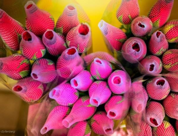 Blomstermarknaden i Hongkong