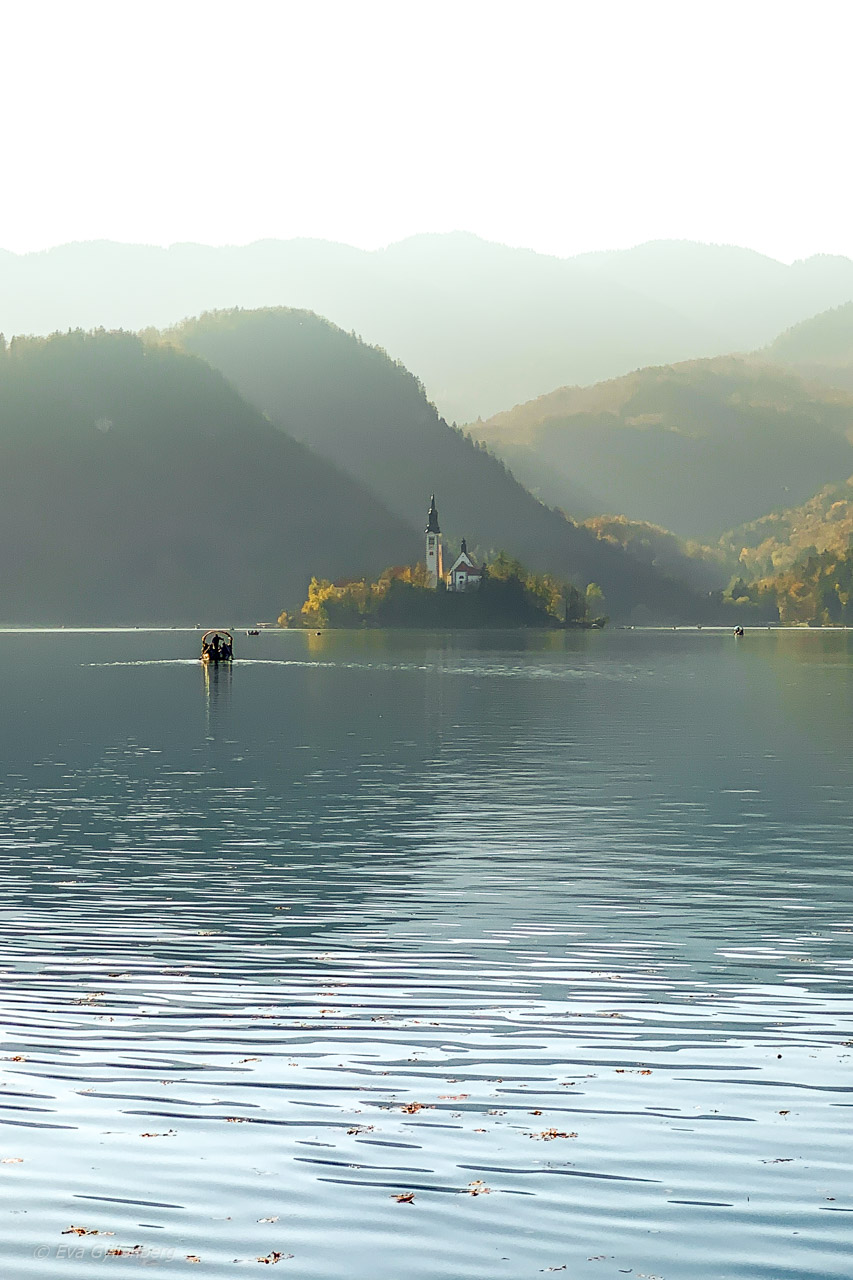 Dimma över Lake Bled