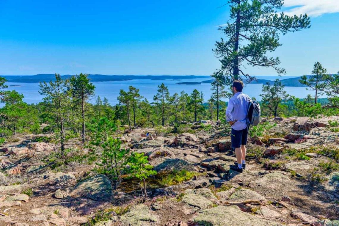 This view!  Skuleskogen delivers!