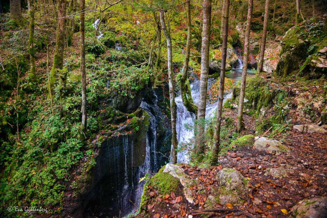 Sunik-vattenlund-Slovenien