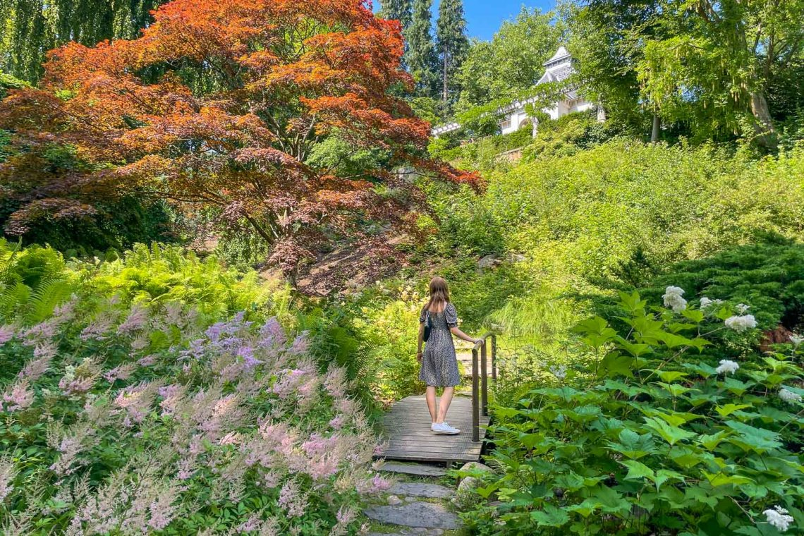 Woman in dress on a bridge in the Japanese garden