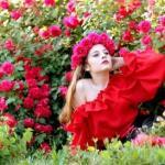 red-roses-garden