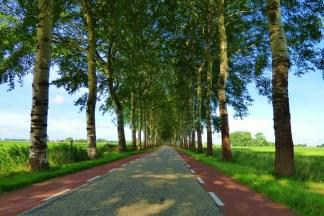Dorkwerd - landweg (1024x683)
