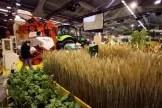Stand de semences bio au Salon de l'Agriculture 2008 à Paris Patrick Hertzog AFP/Archives