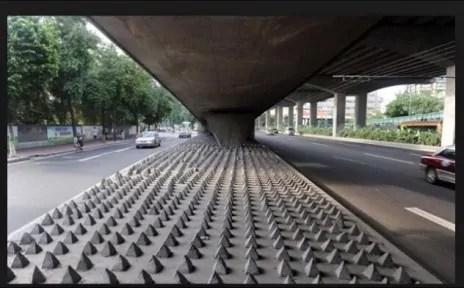 """Sous-pont à picots (""""Marche ou crève"""")."""