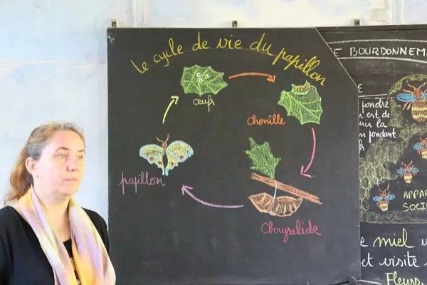Pas de manuel, mais un schéma a été préparé en amont pour visualiser le cours (crédit : LM / Rue89Lyon©)