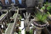 Jardin Rosa Mir